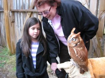 Caelyn meets an Eastern Screech Owl