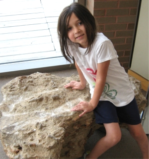 On another fossil rock