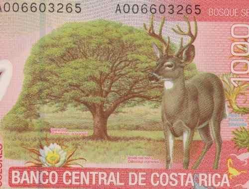 costa-rica-1000-colones