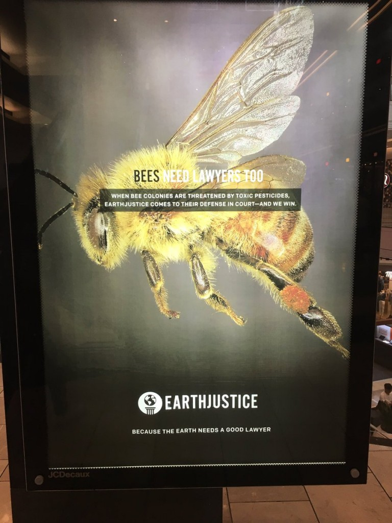 bees.need.lawyers.too