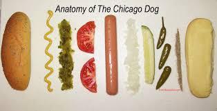 chicagodog