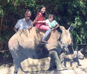 zoo.rhino
